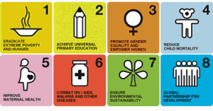 MDG categories